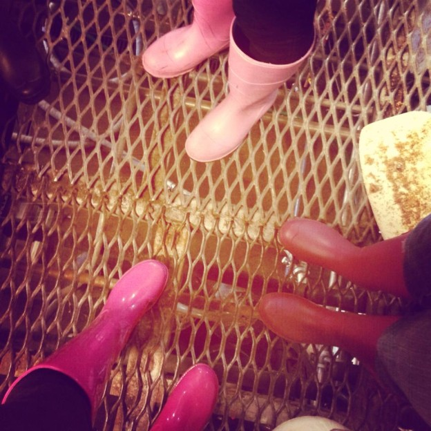 Brewed with Pink Boots